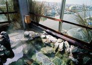 露天風呂イメージ(ラビスタ釧路川)
