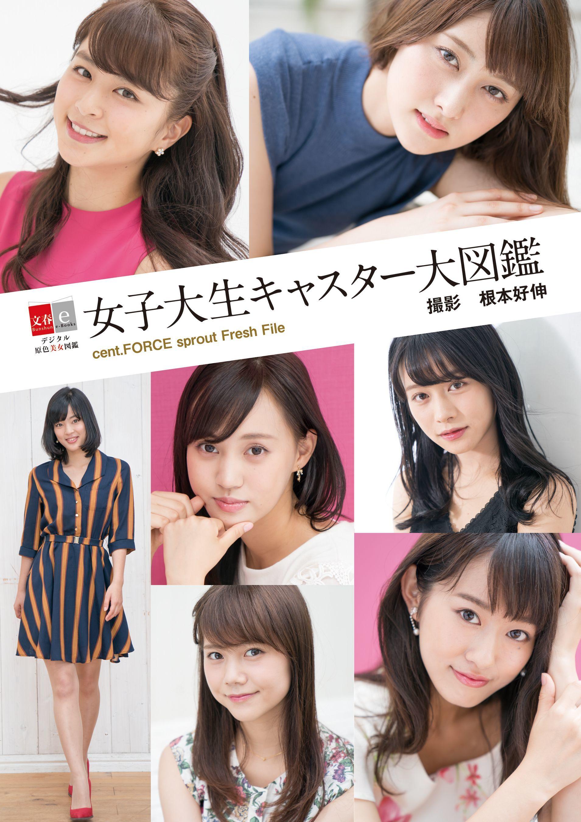 http://www.atpress.ne.jp/releases/167779/img_167779_1.jpg