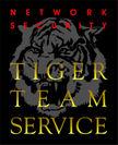 タイガーチームサービス