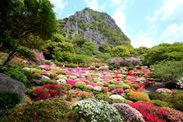 御船山楽園の「つつじ谷」