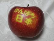 りんごに思いをのせて