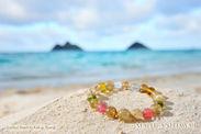 「全米で最も美しいビーチ」に選ばれたラニカイビーチでの撮影
