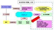 <検査体制のスキーム図>