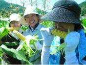 農作物の収穫体験