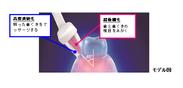 「歯ぐきのマッサージ」モデル図