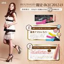 アイビルDHセラミックアイロン限定BOX2012-13説明