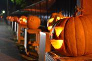 わっさむ町毎年で行われるかぼちゃイベント