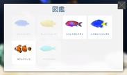 取得した魚が見られる図鑑