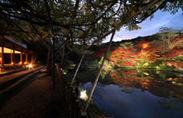 九州最大の紅葉ライトアップ 2
