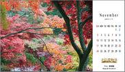 (11月)鮮やかな色彩を表現しました
