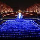 「ライトアップ夜景遺産」にも認定された都内最大級のイルミーネーション。「Winter Vista Illumination 2012」は12月8日~25日の17時~21時まで開催。