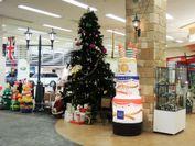 巨大ツリーでクリスマス気分をカフェで味わってください♪