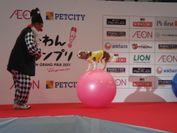 『芸-わん!グランプリ2011』優勝者と犬のペア