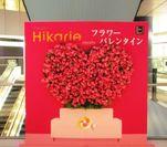 渋谷ヒカリエ 「幸せのハートモニュメント」