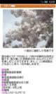 「お花見情報」のサンプル画面