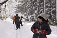 雪を楽しむツアー参加者
