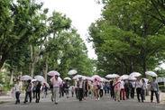 昨年の東京傘開きの様子