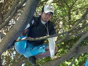 木の上からテントを作り