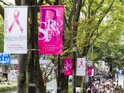 「スマイルウォーク」の様子 写真提供:日本対がん協会
