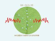 蒸散抑制の図