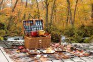紅葉の森をスイーツピクニック