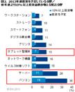 図2 2013年度投資予定分野