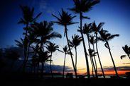 ハワイ イメージ2