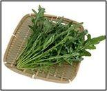 希少な「葉物野菜」セルバチコ