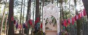 森の中で行う結婚式 イメージ