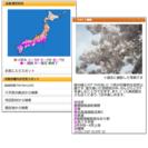 お花見情報 サンプルイメージ