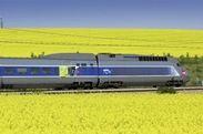 春の菜の花畑を行くSNCFの高速鉄道TGV