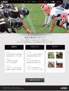 生成される選手・チーム用WEBサイト