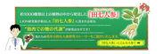 WEBサイト『LION田七人参研究』トップ画面イメージ