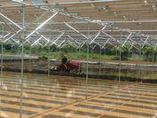 ソーラーパネルの下で田を耕すトラクター