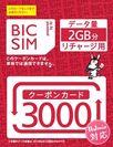 IIJmioクーポンカード3000(ビックカメラ専用)