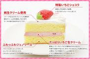 ケーキ切り口