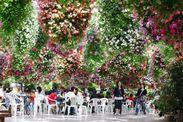 掛川花鳥園:花温室
