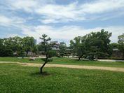 大阪城公園内 大手前芝生広場