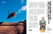 動物写真家・岩合光昭さんにインタビュー