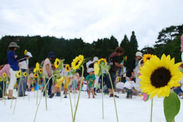 「雪上ひまわり畑」開催時の様子