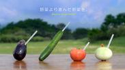 『高性能爆薬でつくる野菜ジュース』WEBサイトイメージ