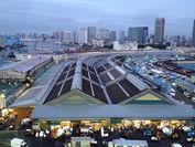 『Tsukiji Wonderland(仮題)』(1)