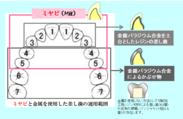 図1:ミヤビ健保適用範囲