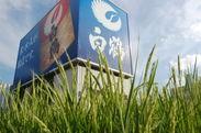 白鶴銀座空中庭園:銀座の中心で育つ稲