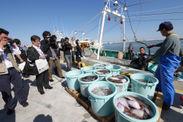 松川浦漁港で水揚げの様子を取材する報道関係者