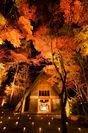 軽井沢高原教会「紅葉ライトアップ」