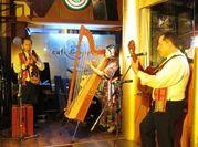 木の楽器「アルパ」の音色を聴いてみよう