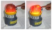 左:蜜が入っていないリンゴ、右:蜜が入ったリンゴ