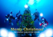 クリスマス特別企画(1)