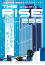 THE RISE256